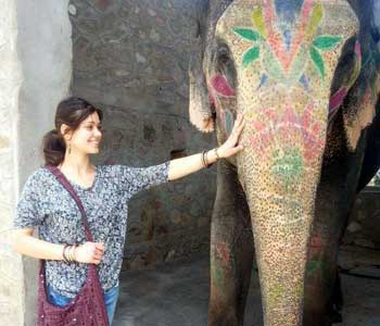 jaipur full day tour