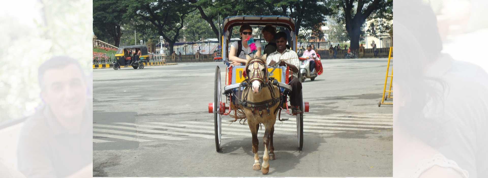 Tonga Ride